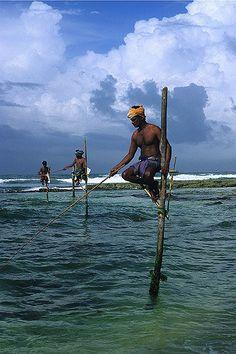 ˚Stilt Fishermen - Southern Coast, Sri Lanka