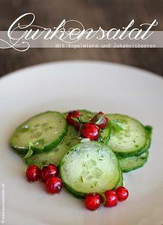 Wurzelweber - rohköstlich, vegan und naturnah: Gurkensalat mit Vogelmiere und roten Johannisbeeren
