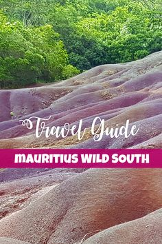 One of my favourite experiences on our Mauritius trip, and one that felt – truly Mauritian – was our little rum tasting tour and touring the Mauritius Wild South. Rum Tasting, African Life, Mauritius, Touring, Travel, Viajes, Trips, Traveling, Tourism