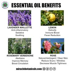 Find out about some of the many therapeutic benefits of essential oils including lavender, lemon, rosemary and rose.   #herbalism #lightworker #anointing #mompreneur #holistichealth #holistichealing #chakrabalancing #chakralove #essentialoils #aromatherap