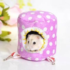 Dog Toys Pet Products Pet Puppy Dog Chew Squeaker Squeaky Plush Sound Pig Elephant Duck Ball Toy Wholesale J10