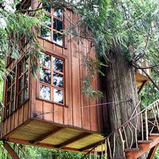Venue treehouse point on pinterest treehouse wedding photos and