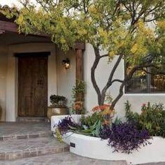 Full-Shade Plants for the Desert - Phoenix Home & Garden