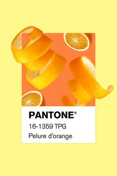 I created a series of collages and brought them to life based on Pantone color's names More on www. 31 Day Challenge, Orange Design, Orange You Glad, Rainbow Wall, Graphic Design Posters, Name Cards, Color Names, Pantone Color, Wall Collage