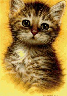 старые котят фото: 20 тыс изображений найдено в Яндекс.Картинках