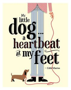 """My little dog...a heartbeat at my feet"" – Edith Wharton (via RareMachine) <a class=""pintag"" href=""/explore/dachshund/"" title=""#dachshund explore Pinterest"">#dachshund</a> <a class=""pintag searchlink"" data-query=""%23doxie"" data-type=""hashtag"" href=""/search/?q=%23doxie&rs=hashtag"" rel=""nofollow"" title=""#doxie search Pinterest"">#doxie</a>"