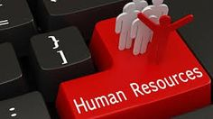 At Human Resource Catalyst we are experienced in recruiting diverse roles from a number of different industries. We are successful in finding the right people because of our understanding of our client's needs.