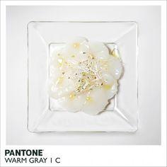 Comida Pantone