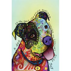 """Zipcode Design Pure Joy Graphic Art on Wrapped Canvas Size: 18"""" H x 12"""" W x 0.75"""" D"""