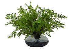 """24"""" Maiden Hair Fern in Vase, Faux on OneKingsLane.com"""