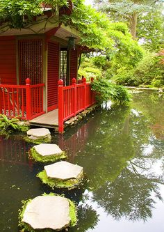 My dream is to have a huge pond with a gazebo or tea house in the middle somewhere, and stepping stones like this leading to it!