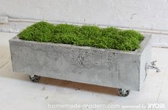 DIY Concrete Planter / HomeMade Modern