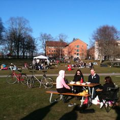 #Spring on #VaxjoCampus #vaxjo #Sweden #BBQ