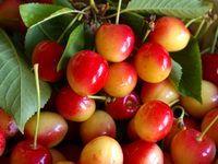 Cherry, Vegetables, Cherry Cake, Cherries, Alcohol, Kitchens, Wall, Art Paintings, Veggie Food