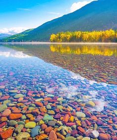 Beautiful fall Saturday morning at Glacier National Park! The rocks in this lake are so insanely colorful! 🌈 Which picture do you like better, 1 or 🍁 Do you see the fog coming off the lake? 💛 🍂 What are your plans this weekend? Lake Mcdonald Montana, Places To Travel, Places To Go, Glacier National Park Montana, Cabin In The Woods, Plein Air, Park City, Nature Pictures, Ciel