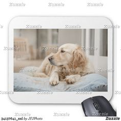 Shop mouse pad created by JFJPhoto. New Employee, Custom Mouse Pads, Looks Great