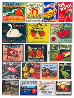 NEW SCRAPBOOK,  Scrapbook Ephemera Sheet, Mixed Media Fruit and Vegatable Crate Labels, Citrus, Paper Crafting Vintage Images Sheet 16