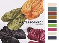 Colores de moda para el otoño invierno 2018-19, las tendencias cromáticas de The Color Community