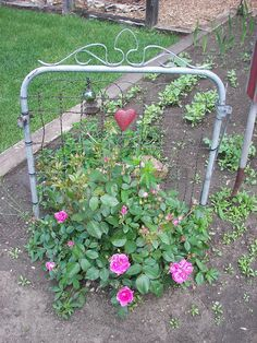 Use an old garden gate as plant support. Love! =)
