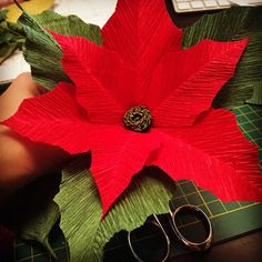 Crepe paper #poinsettia by Anpaperflowers - #crepepaperflowers #italiancrepepaper #cartotecnicarossi