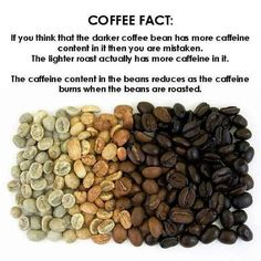 If you would like to try roasting green coffee beans at home, equip yourself with knowledge and the right tools to produce the best-roasted coffee beans. Coffee Type, Best Coffee, Coffee Shop, Coffee Facts, Coffee Quotes, Coffee Tasting, Coffee Drinks, Tostadas, Latte