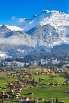 Grindelwald , Switzerland .I want to go see this place one day.Please check out my website thanks. www.photopix.co.nz