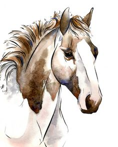 """Horse Art: """"Diva"""", Archival Giclee Watercolor & Ink Painting Reproduction"""