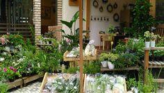 食べられるお庭ってなあに?都会にいながら自然を感じるお店「Herb & Vege Homegrown」|LOHASCLUB