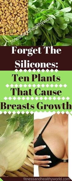 #silicones #breasts #growth #health #homeremedy #plants