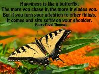Happiness is like a butterfly #Quotes
