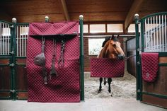 Kentucky Love - That Grumpy Horse Kentucky, Equestrian Style, Equestrian Fashion, Bordeaux, Ringe Gold, Horse World, Horse Tack, Horseback Riding, Dressage