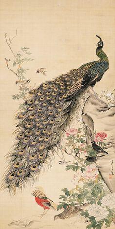 長沢蘆雪 Rosetsu Nagasawa『牡丹孔雀図』 静岡県立美術館蔵|peacock. Japanese hanging scroll. Edo period. Shizuoka Prefectural Museum of Art