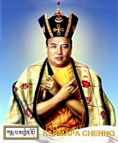 The 16th Gyalwang Karmapa--a realized being.