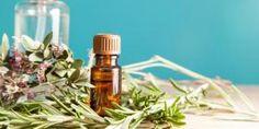 Como fazer óleo de alecrim caseiro