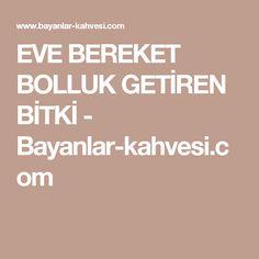 EVE BEREKET BOLLUK GETİREN BİTKİ - Bayanlar-kahvesi.com