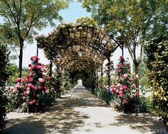 Janet De Botton, Provence - Janet de Botton's exquisite rose-scented pergola in the South of France.