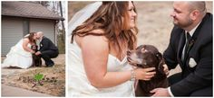 Elegant wedding by Wren Photography. Gorgeous colors of gold and teal. Reception held at the historic Landmark Inn in downtown Marquette, MI. Dog with Bride and Groom.