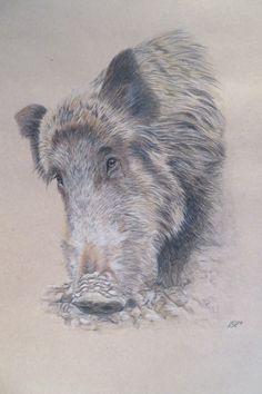 Ein persönlicher Favorit aus meinem Etsy-Shop https://www.etsy.com/de/listing/528811323/zeichnung-wildschwein-original