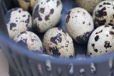 huevos-cocidos-codorniz-thermomix-cestillo