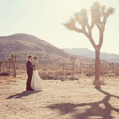 Joshua Tree outdoor Wedding. Courtesy of Stephanie Williams Photography.