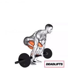 Deadlift video for proper form 14 Days to an Amazing, Fit Body Gym Workout Videos, Gym Workouts, At Home Workouts, Workout Exercises, Muscle Fitness, Mens Fitness, Side Bends Exercise, Leg Workouts For Men, Weight Training Workouts