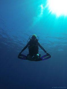 Underwater meditation...