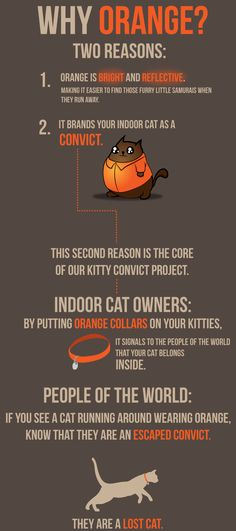 Why Orange? The Kitty Convict Project: An elegant solution to a tricky problem.