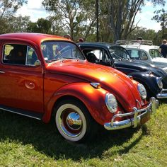 I took this photo at Dubs at the Abbey 2015. Queensland Australia