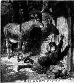 'Terrified to Death by a Donkey' From the Illustrated Police News, 1883. [via Digital Victorianist]