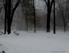 freddo silenzio