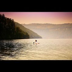 Nature is peace a healing force where one finds oneself the calm in the storm a place that never is dark as the moon is always there... Nature is home.  #myworld #home #mckenziebite #paddleboarding #naturelover #forest #pacificocean #sunset #glow #journey #exploring #canada #peace #bliss #healing #thecalm #mothernature #ourbeautifulplanet #canon by nataliefayphotography