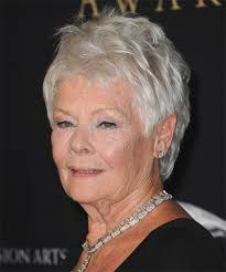 View yourself with this Judi Dench Short Straight Light Grey Hairstyle Short Grey Hair, Short Straight Hair, Short Hair Cuts, Short Hair Styles, Casual Hairstyles, Older Women Hairstyles, Straight Hairstyles, Judy Dench Hair, Judi Dench