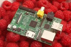 The bare essentials ... the Raspberry Pi.