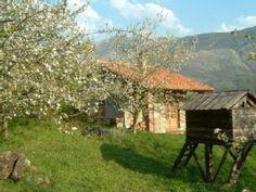 Mooi huis tussen de zee en de Picos de Europa. Gebouwd van steen en hout